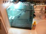 洗面所に30CM