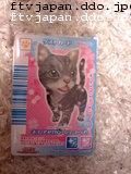 ネコのカード