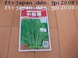 小松菜を植える